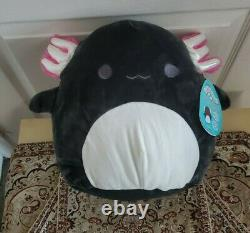 12 Jaelyn the Black Axolotl Squishmallow NWT Extremely Rare
